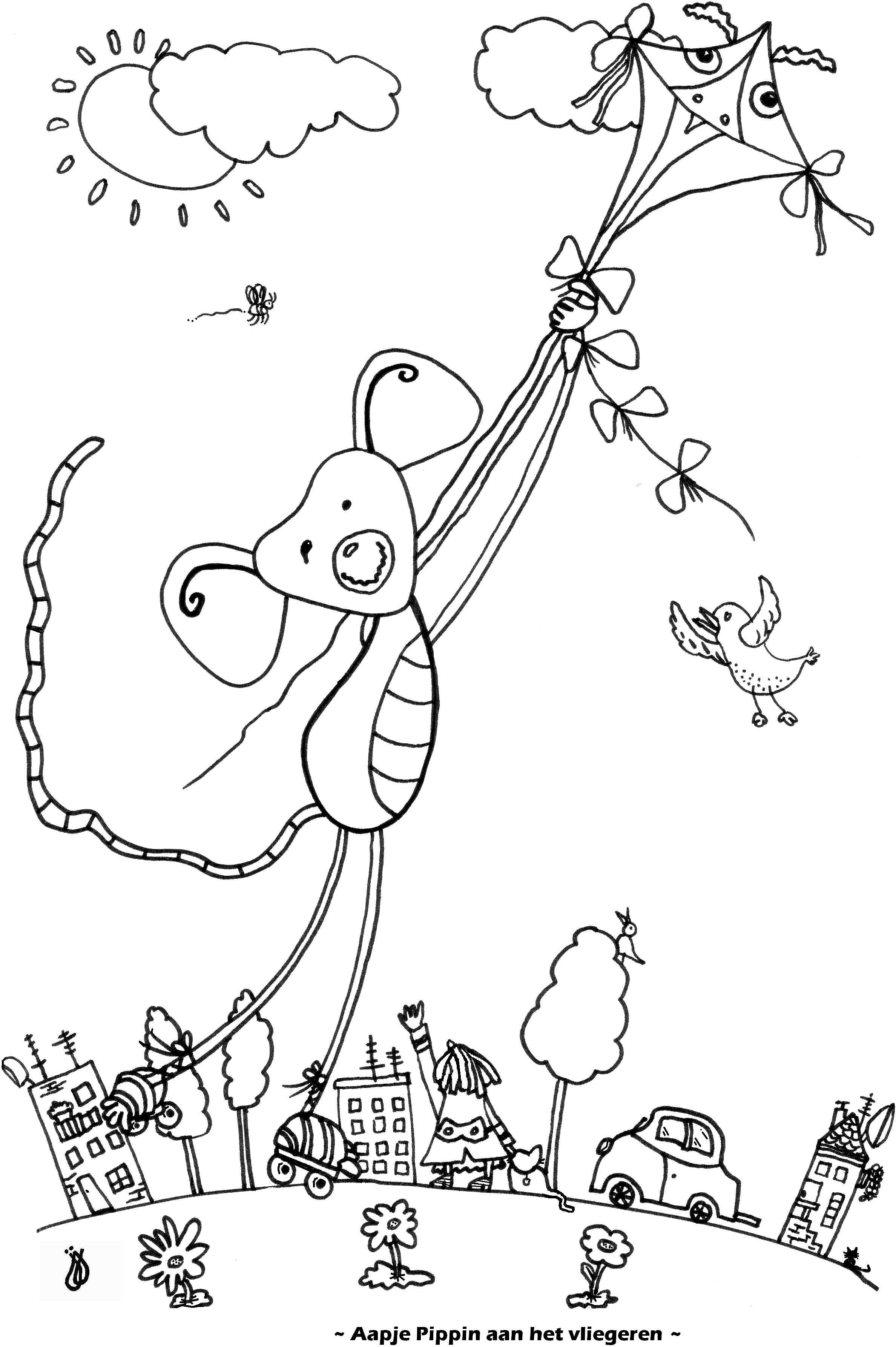 Aapje Pippin aan het vliegeren