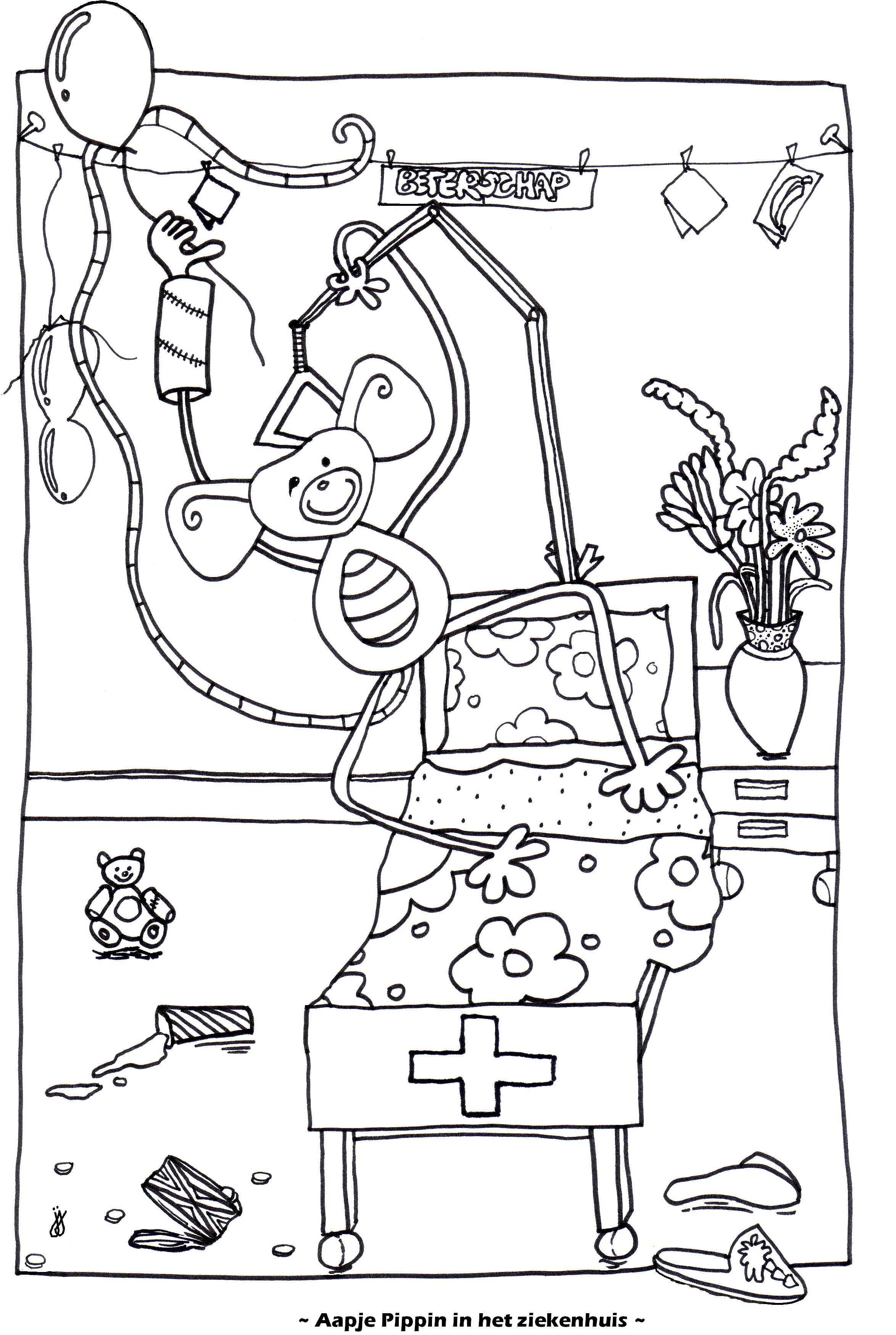 Aapje Pippin in het ziekenhuis
